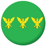 Caernarfonshire County Flag 25mm Pin Button Badge